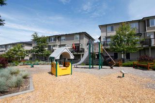 """Photo 20: 37 7938 209 Street in Langley: Willoughby Heights Townhouse for sale in """"Red Maple Park"""" : MLS®# R2338370"""