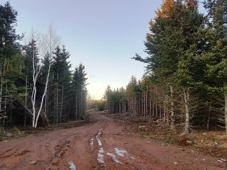 Photo 2: LOT MCNALLY Road in Victoria Harbour: 404-Kings County Vacant Land for sale (Annapolis Valley)  : MLS®# 201923444