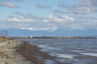 Photo 40: 1584 BEACH GROVE Road in Delta: Beach Grove House for sale (Tsawwassen)  : MLS®# R2575958