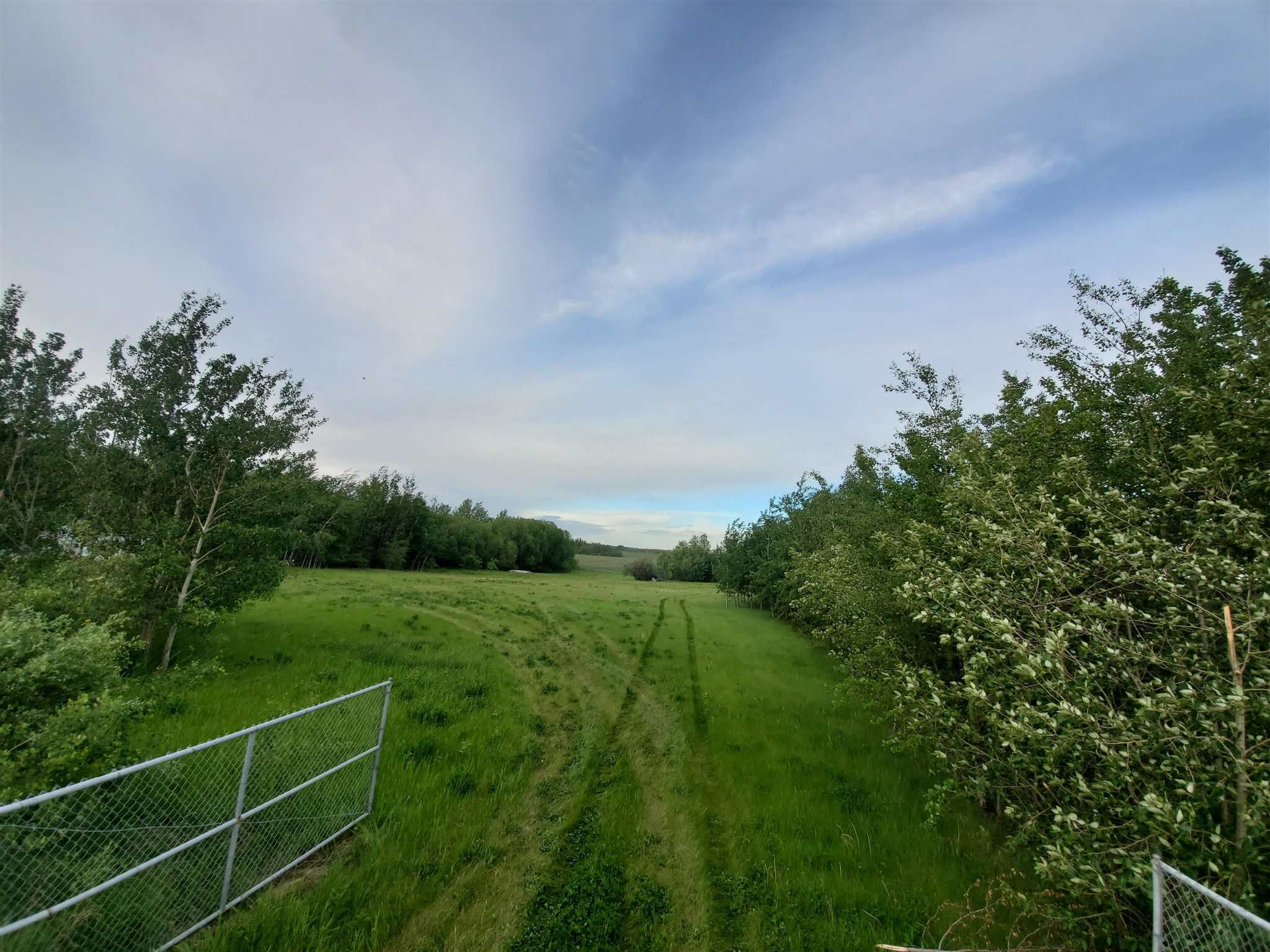 Main Photo: 53145 RGE RD 223: Rural Strathcona County Rural Land/Vacant Lot for sale : MLS®# E4250369
