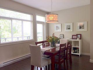 Photo 4: 14377 60th Avenue in Blume: Sullivan Station Home for sale ()  : MLS®#  F1441548