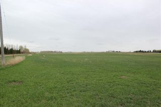 Photo 3: On Highway 567 in Rural Rocky View County: Rural Rocky View MD Land for sale : MLS®# C4233359