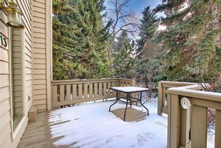 Photo 36: 213 Point Mckay Terrace NW in Calgary: Point McKay Row/Townhouse for sale : MLS®# A1050776