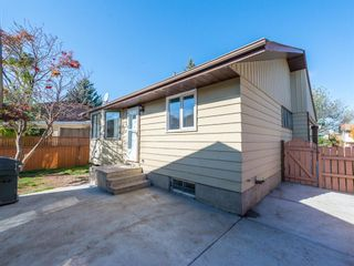 Photo 26: 51 Templewood Mews NE in Calgary: Temple Detached for sale : MLS®# A1039525