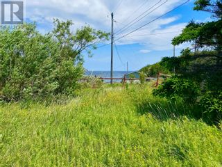 Photo 3: 5 Little Harbour Road in Twillingate: House for sale : MLS®# 1233301