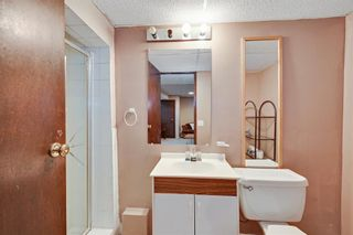 Photo 32: 129 Marquis Place SE: Airdrie Detached for sale : MLS®# A1086920