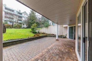 Photo 11: 101 11605 227 Street in Maple Ridge: East Central Condo for sale : MLS®# R2230629