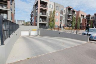 Photo 30: 407 1004 ROSENTHAL Boulevard in Edmonton: Zone 58 Condo for sale : MLS®# E4248881