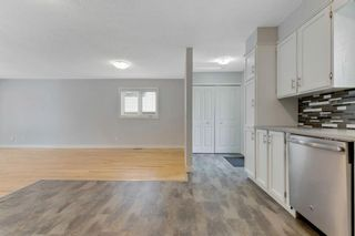 Photo 10: 28 Mckerrell Crescent SE in Calgary: McKenzie Lake Detached for sale : MLS®# A1049052