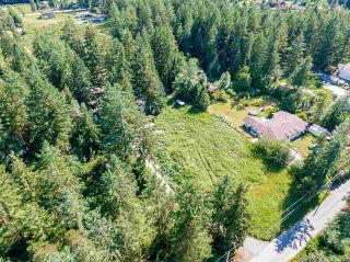 Photo 4: 19860 30 Avenue in Langley: Brookswood Langley House for sale : MLS®# R2590552