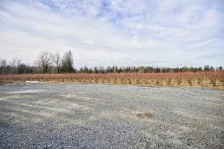 Photo 6: 4281 BRADNER Road in Abbotsford: Bradner House for sale : MLS®# R2539482
