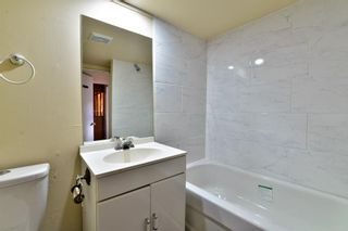 Photo 19: 3028 33A Avenue SE in Calgary: Dover Detached for sale : MLS®# A1069811