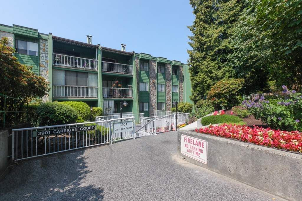 """Main Photo: 108 3901 CARRIGAN Court in Burnaby: Government Road Condo for sale in """"LOUGHEED STATE II"""" (Burnaby North)  : MLS®# R2294655"""