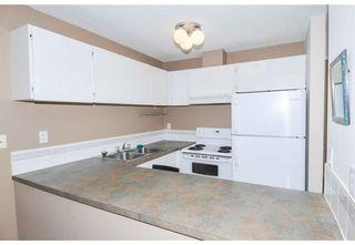 Photo 12: 305 110 20 Avenue NE in Calgary: Tuxedo Park Apartment for sale : MLS®# A1096695