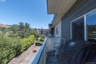 Photo 14: 405 976 Inverness Rd in VICTORIA: SE Quadra Condo for sale (Saanich East)  : MLS®# 793066