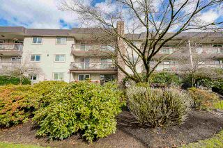 "Photo 4: 205 2381 BURY Avenue in Port Coquitlam: Central Pt Coquitlam Condo for sale in ""RIVERSIDE MANOR"" : MLS®# R2542567"