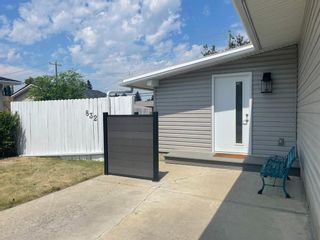 Photo 29: 832 Macleay Road NE in Calgary: Mayland Heights Detached for sale : MLS®# A1125875