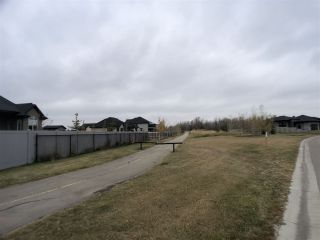 Photo 6: 238 52320 RGE RD 231: Rural Strathcona County Rural Land/Vacant Lot for sale : MLS®# E4220541
