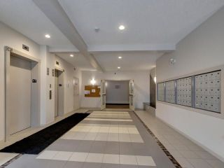 Photo 19: RUTHERFORD in Edmonton: Zone 55 Condo for sale : MLS®# E4134641