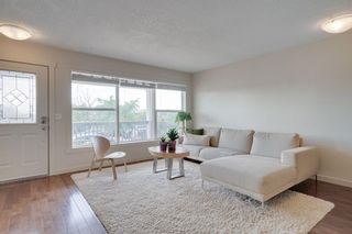 Photo 9: 2814 12 Avenue SE in Calgary: Albert Park/Radisson Heights Detached for sale : MLS®# A1123286