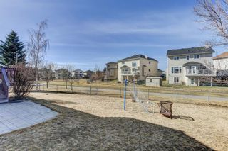 Photo 39: 216 Coral Shores Court NE in Calgary: Coral Springs Detached for sale : MLS®# A1116922