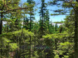 Photo 14: Lot 48 FLINT Road: Keats Island Land for sale (Sunshine Coast)  : MLS®# R2460854