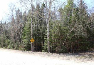 Photo 5: Lot 87 Otter Point Road in East Chester: 405-Lunenburg County Vacant Land for sale (South Shore)  : MLS®# 202109366