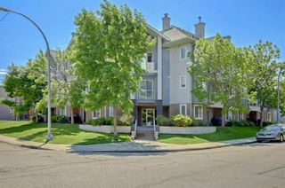 Photo 1: 305 3501 15 Street SW in Calgary: Altadore Apartment for sale : MLS®# A1063257