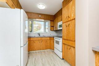 Photo 15: 10540 60A Avenue in Edmonton: Zone 15 House for sale : MLS®# E4265969