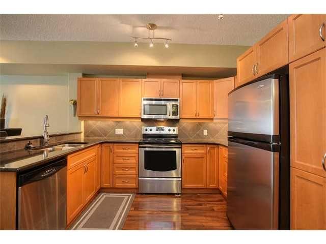 Main Photo: Downtown in : Zone 12 Condo for sale (Edmonton)  : MLS®# E3414713
