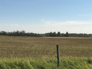 Photo 7: 57525 Rg Rd 214: Rural Sturgeon County Rural Land/Vacant Lot for sale : MLS®# E4266088