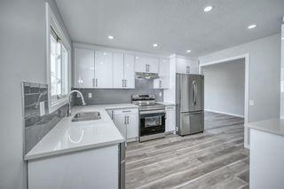 Photo 4: 39 Aberdare Road NE in Calgary: Abbeydale Detached for sale : MLS®# A1127004