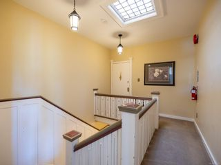 Photo 23: 521 Linden Ave in : Vi Fairfield West Other for sale (Victoria)  : MLS®# 886115