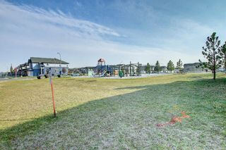 Photo 25: 3 Skyview Springs Crescent NE in Calgary: Skyview Ranch Detached for sale : MLS®# A1153447