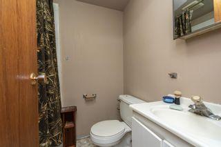 Photo 29: 17 BLACKSTONE Crescent: Devon House for sale : MLS®# E4250447