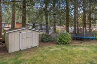 Photo 21: 62 MORVEN Drive in West Vancouver: Glenmore Townhouse for sale : MLS®# R2573609