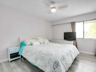 """Photo 16: 302 535 BLUE MOUNTAIN Street in Coquitlam: Central Coquitlam Condo for sale in """"REGAL COURT"""" : MLS®# R2578388"""