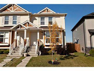 Photo 23: 102 AUTUMN Green SE in Calgary: Auburn Bay House for sale : MLS®# C4082157