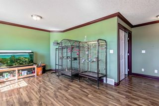 Photo 20: 113 West Creek Pond: Chestermere Detached for sale : MLS®# A1126461