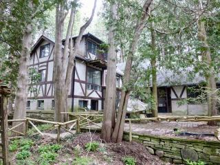Photo 11: 663 River Road in Caledon: Rural Caledon House (2-Storey) for sale : MLS®# W4770472