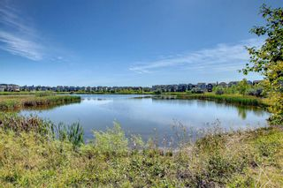 Photo 40: 1302 279 Copperpond Common SE in Calgary: Copperfield Apartment for sale : MLS®# A1146918