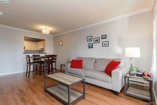 Photo 9: 202 1536 Hillside Ave in VICTORIA: Vi Oaklands Condo for sale (Victoria)  : MLS®# 808123