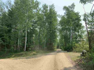 Photo 12: 10081 Croswell Road: Rural Lesser Slave River M.D. Business with Property for sale : MLS®# E4151780