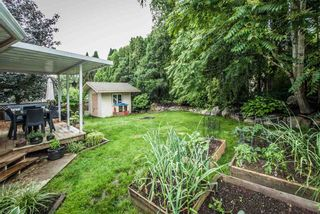 Photo 19: 8233 FUJINO STREET in Mission: Mission BC House for sale : MLS®# R2080943