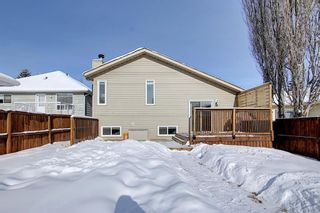 Photo 47: 119 Shawinigan Drive SW in Calgary: Shawnessy Detached for sale : MLS®# A1068163