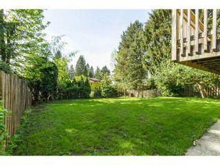 Photo 19: 11771 GRAVES Street in Maple Ridge: Southwest Maple Ridge House for sale : MLS®# R2059887