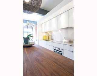 """Photo 6: 510 53 WEST HASTINGS Street in Vancouver: Downtown VW Condo for sale in """"PARIS ANNEX"""" (Vancouver West)  : MLS®# V749029"""