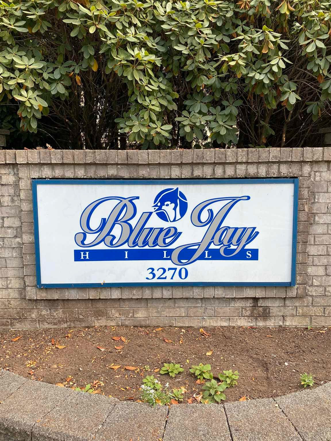 """Main Photo: 26 3270 BLUE JAY Street in Abbotsford: Abbotsford West Townhouse for sale in """"Blue Jay Hills"""" : MLS®# R2606551"""
