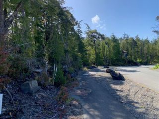 Photo 1: lot 50 Cedar Grove Pl in : PA Ucluelet Land for sale (Port Alberni)  : MLS®# 876745