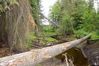 Photo 34: DL 1335A 37 Highway: Kitwanga Land for sale (Smithers And Area (Zone 54))  : MLS®# R2471833